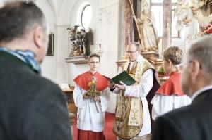137a-Fotograf-Hochzeit-Margret-Franz-Köstendorf-6565