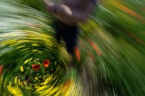 Kunstreise-Valle-Agredo-Dante-Alighieri-KunstBox-DSC3804-by-FOTO-FLAUSEN