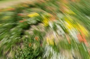 Kunstreise-Valle-Agredo-Dante-Alighieri-KunstBox-DSC3824-by-FOTO-FLAUSEN