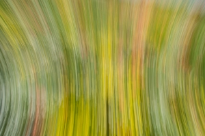 Kunstreise-Valle-Agredo-Dante-Alighieri-KunstBox-DSC3825-by-FOTO-FLAUSEN