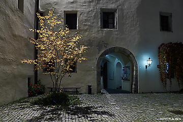 257-GWOE-Tour-Schloss-Goldegg-_DSC9476-FOTO-FLAUSEN