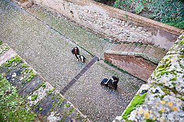 Granada-Spanien-_DSC5701-FOTO-FLAUSEN