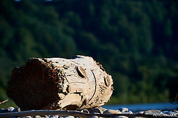 Salzach-Kanu-Tour-_DSC9005-FOTO-FLAUSEN
