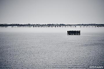 Kunst-Reise-KunstBox-Dante-Alighieri-_DSC8901-FOTO-FLAUSEN