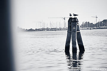 Kunst-Reise-KunstBox-Dante-Alighieri-_DSC9548-FOTO-FLAUSEN