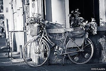 Kunst-Reise-KunstBox-Dante-Alighieri-_DSC9593-FOTO-FLAUSEN