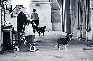 Kunst-Reise-KunstBox-Dante-Alighieri-_DSC9596-FOTO-FLAUSEN