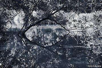 Kunst-Reise-KunstBox-Dante-Alighieri-_DSC9694-FOTO-FLAUSEN