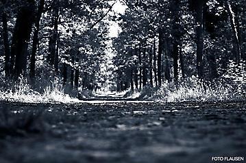 Kunst-Reise-KunstBox-Dante-Alighieri-_DSC9717-FOTO-FLAUSEN