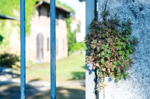 Kunstreise-Valle-Agredo-Dante-Alighieri-KunstBox-DSC3298-by-FOTO-FLAUSEN