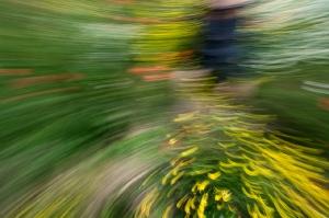 Kunstreise-Valle-Agredo-Dante-Alighieri-KunstBox-DSC3805-by-FOTO-FLAUSEN