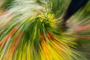 Kunstreise-Valle-Agredo-Dante-Alighieri-KunstBox-DSC3826-by-FOTO-FLAUSEN