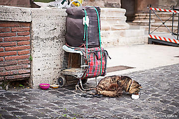 Rom-Stadt-Reise-_DSC1639-by-FOTO-FLAUSEN