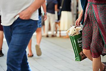 Webermarkt-Haslach-_DSC3207-by-FOTO-FLAUSEN